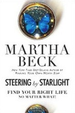SteeringbyStarlight_book